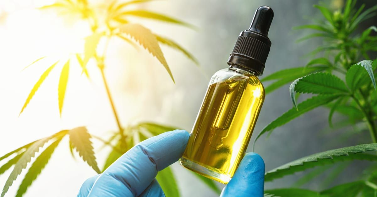 CBD Shop France Outlets Aid Prescribe The Desired Products