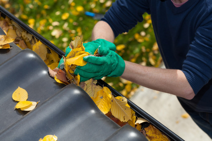 Things to Know Before Hiring a Gutter Cleaner